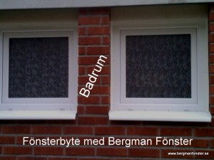 Frostat glas Bergman Fönster